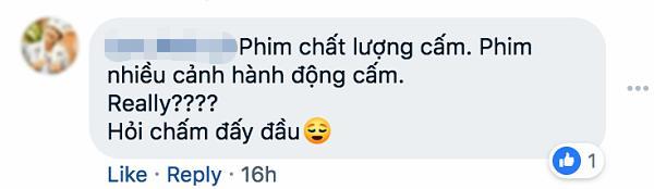 Ngô Thanh Vân: Không có việc phim Hai Phượng bị cấm chiếu ở Việt Nam-3