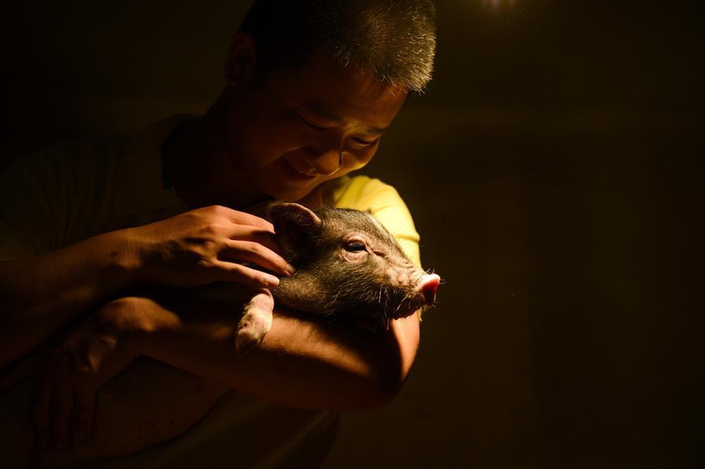 Công viên Hành tinh Lợn ở Trung Quốc hút khách dịp năm mới-9
