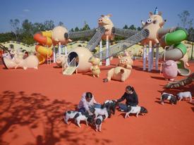Công viên 'Hành tinh Lợn' ở Trung Quốc hút khách dịp năm mới
