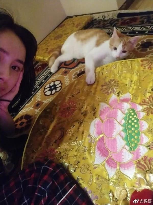 Trở về Hong Kong đón tết cùng con gái, Lưu Khải Uy phản ứng lạ khi bị hỏi hôn nhân có người thứ ba xen vào?-3