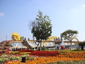 VIDEO: Cận cảnh cầu Vàng tại đường hoa Tết Kỷ Hợi ở Đà Nẵng