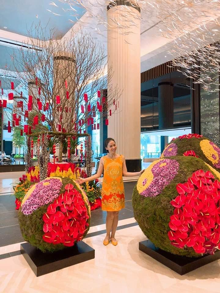 Năm mới gõ cửa, Thu Minh bất ngờ kể lại quá khứ 16 năm... làm dâu hụt thu hút sự chú ý-1