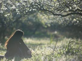 Du xuân Mộc Châu, check-in rừng hoa mận nở trắng trời