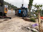 112 người tử vong do tai nạn giao thông trong 6 ngày nghỉ Tết-2