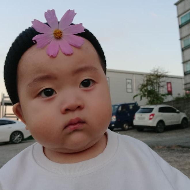 Bé trai Hàn Quốc 2 tuổi nổi tiếng trên mạng vì biểu cảm hài hước-1