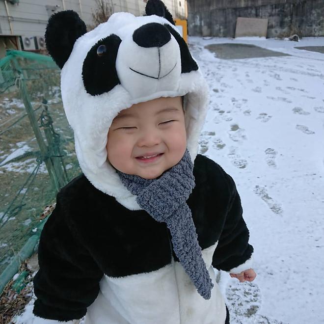 Bé trai Hàn Quốc 2 tuổi nổi tiếng trên mạng vì biểu cảm hài hước-6
