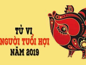 Tử vi tuổi Hợi năm 2019: Sao Thái Tuế chiếu mệnh, họa phúc khó lường
