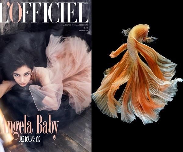 Cùng một chiếc váy, Song Hye Kyo được netizen khen tới tấp vì quá sang chảnh, Angela Baby bị ví như cá vàng bơi-4