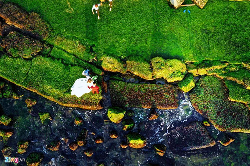 Đầu xuân rủ nhau check-in bãi rêu tuyệt đẹp ở Nha Trang-2