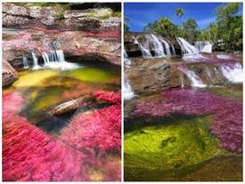 Dòng sông cầu vồng 7 màu kỳ lạ ở Colombia