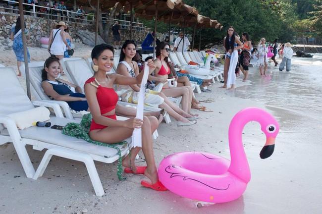 Sau tất cả, đây mới là món giầy hiệu mà Hoa hậu HHen Niê yêu nhất với giá chỉ 10.000 đồng-4