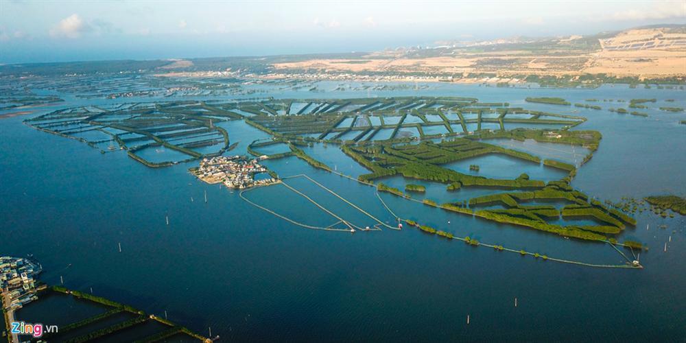 Cồn Chim - đảo ngọc sinh thái tuyệt mỹ bên phố biển Quy Nhơn-1