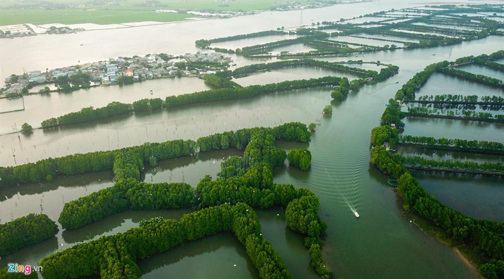 Cồn Chim - đảo ngọc sinh thái tuyệt mỹ bên phố biển Quy Nhơn-3