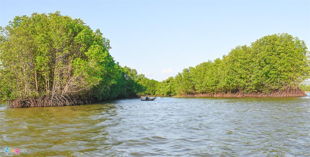 Cồn Chim - đảo ngọc sinh thái tuyệt mỹ bên phố biển Quy Nhơn-4
