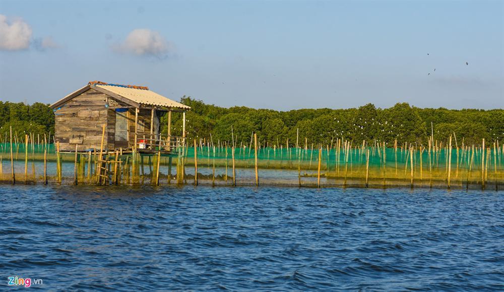 Cồn Chim - đảo ngọc sinh thái tuyệt mỹ bên phố biển Quy Nhơn-13