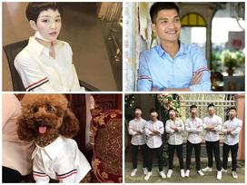 Từ Mạc Văn Khoa đến Trịnh Thăng Bình, Hiền Hồ... cả showbiz Việt vẫn mải mê diện 1 chiếc áo sơ mi quốc dân