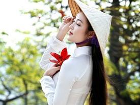 Chiêm ngưỡng con đường hoa gạo đẹp tựa thước phim ở Hà Nội