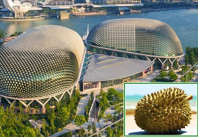 4 công trình đồ ăn thú vị ở Singapore-1