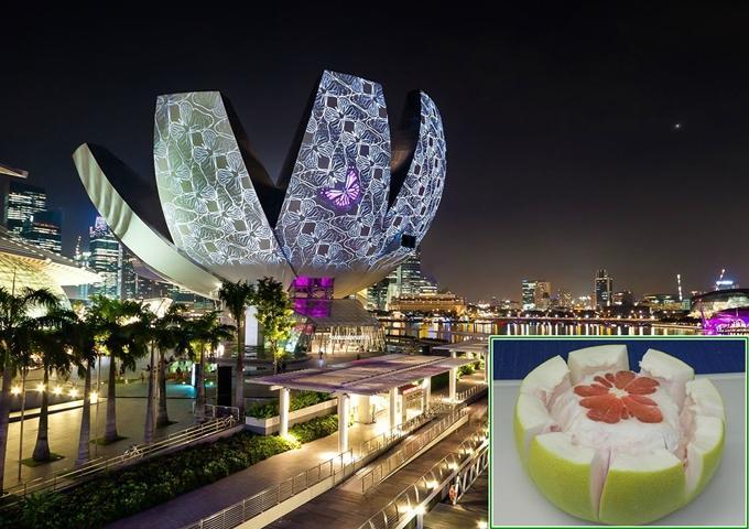 4 công trình đồ ăn thú vị ở Singapore-2
