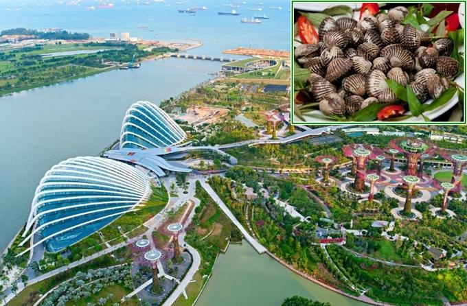 4 công trình đồ ăn thú vị ở Singapore-4
