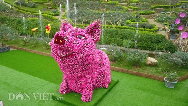 Ngắm chú lợn khổng lồ kết từ hơn vạn bông hồng tươi ở Ba Vì-1