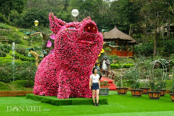 Ngắm chú lợn khổng lồ kết từ hơn vạn bông hồng tươi ở Ba Vì-2