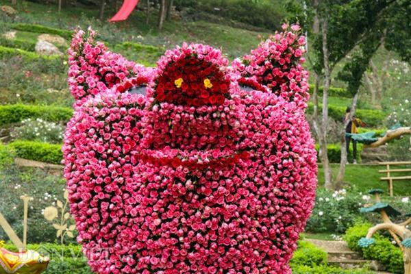 Ngắm chú lợn khổng lồ kết từ hơn vạn bông hồng tươi ở Ba Vì-3