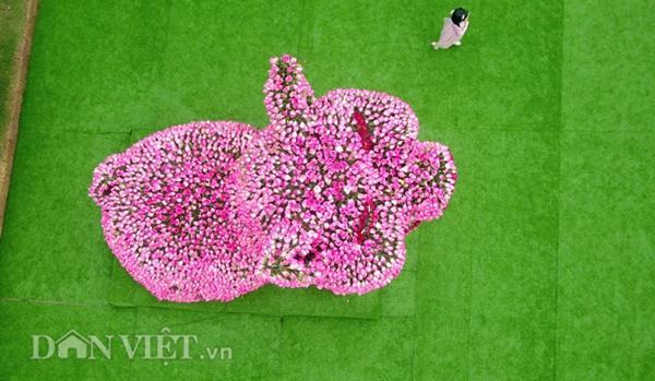 Ngắm chú lợn khổng lồ kết từ hơn vạn bông hồng tươi ở Ba Vì-6