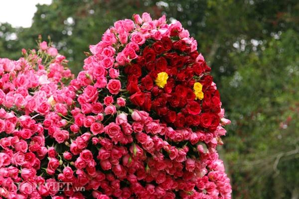Ngắm chú lợn khổng lồ kết từ hơn vạn bông hồng tươi ở Ba Vì-7
