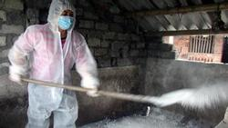 Hưng Yên lập 170 chốt kiểm dịch để ngăn dịch tả lợn châu Phi