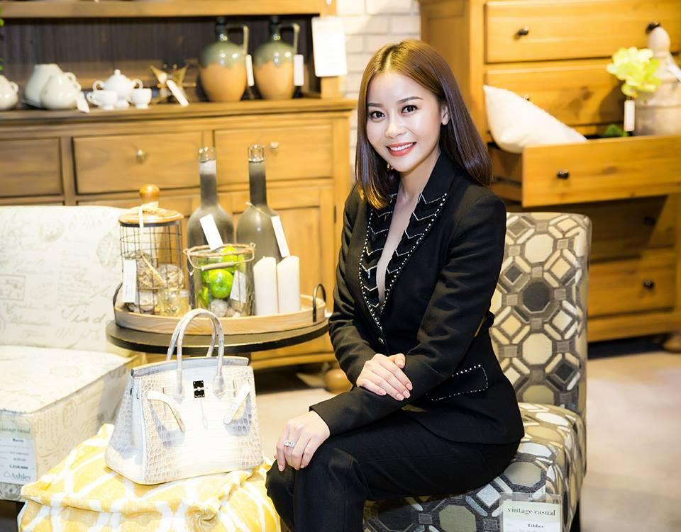 Sự thật về chiếc túi Hermès Birkin đắt nhất thế giới Lâm Khánh Chi được chồng tặng-6
