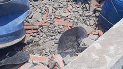 Vĩnh Long: Sập tường công trình nhà xưởng vùi lấp ít nhất 15 công nhân, 5 người tử vong