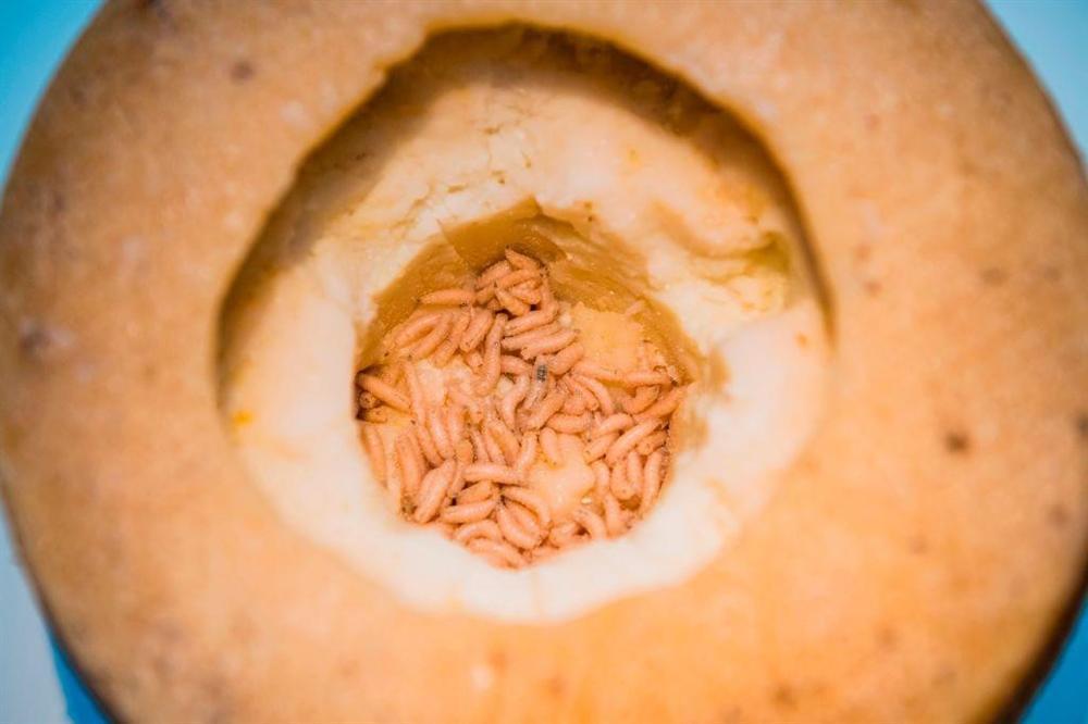 Cá thối, thịt ếch và những món ăn tiềm ẩn nguy cơ chết người-6