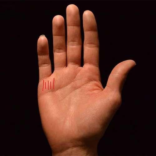 6 dấu hiệu TƯỚNG HỌC chỉ xuất hiện ở bàn tay người phụ nữ mang MỆNH PHƯỢNG HOÀNG, không giàu sang cũng phú quý-1