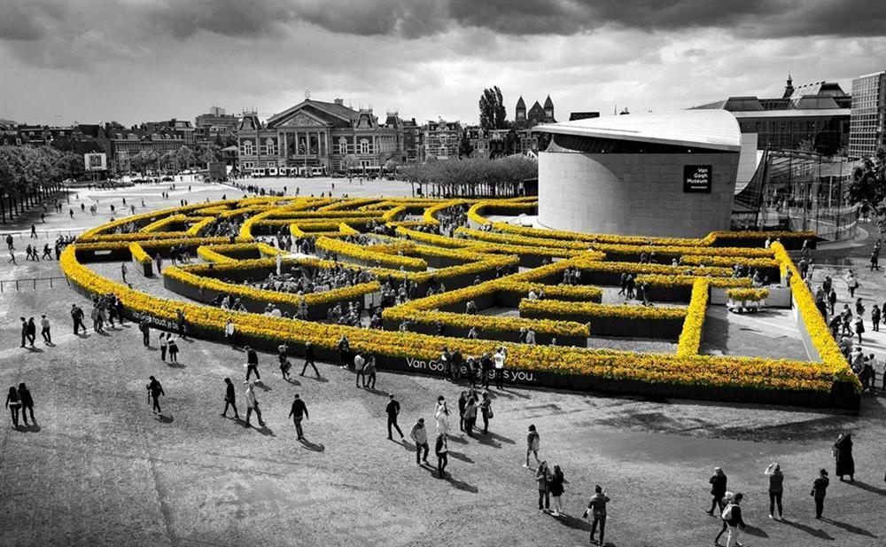 Mê cung hoa hướng dương đẹp xiêu lòng trước bảo tàng Van Gogh ở Hà Lan-9