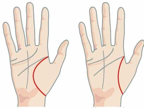 5 dấu hiệu tướng học chỉ xuất hiện ở bàn tay của người phụ nữ giàu sang số sướng, hậu vận an nhàn-1