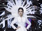 Hoa hậu Trương Hồ Phương Nga bất ngờ làm vedette tái xuất showbiz Việt