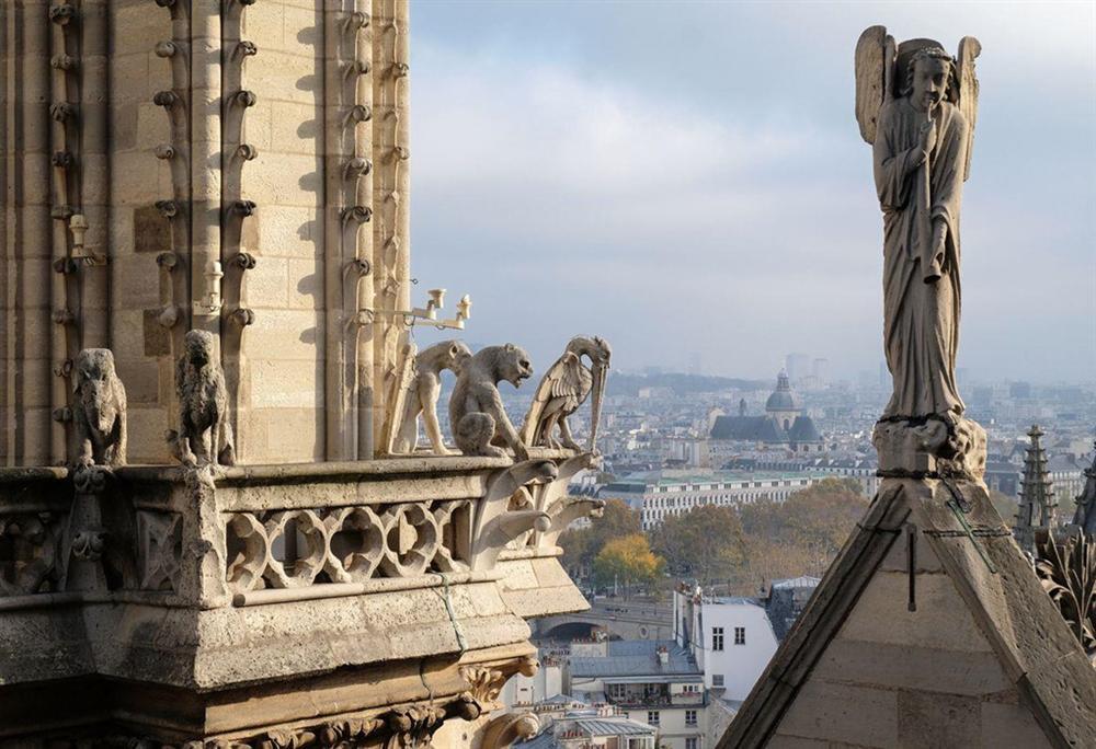 Hồi ức về Nhà thờ Đức Bà, kiến trúc hoàn mỹ của nhân loại-7