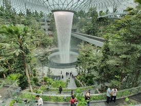 Cận cảnh tổ hợp thiết kế mới đẹp hút hồn trong sân bay Changi