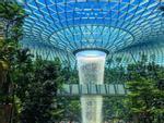 Du khách hào hứng check-in bên thác nước ở sân bay Changi