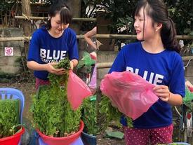 Đầu tuần, cô bé bán rau rừng 'duyên ơi là duyên' khiến dân mạng xôn xao tìm danh tính
