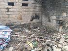 Vụ bác rể sát hại cháu trai 8 tuổi ở Hà Nội: Thi thể bị buộc chặt trong bao tải, chôn sâu trong đống gạch đá