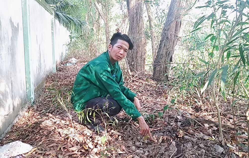 300 thai nhi bị bỏ theo rác: Chủ tịch Cà Mau chỉ đạo kiểm tra các bệnh viện-2