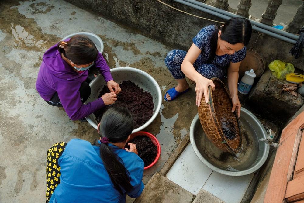 Đặc sản rau cạo Nghệ An nhìn ghê ghê: Ăn 1 lại muốn ăn 2-5