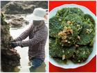 Đặc sản rau cạo Nghệ An nhìn ghê ghê: Ăn 1 lại muốn ăn 2