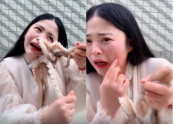 Livestream ăn bạch tuộc sống, cô gái bất ngờ bị bạch tuộc ăn lại và cái kết khiến cư dân mạng phẫn nộ-2