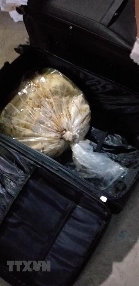Hình ảnh vụ bắt nhóm người nước ngoài vận chuyển 500kg ma túy-8
