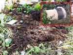 Vụ 2 xác người bị đổ bê tông ở Bình Dương: Cô gái tên Thanh là người thuê nhà cuối cùng-4