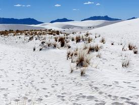 Sa mạc thạch cao mát lạnh, trắng như tuyết ở Mỹ