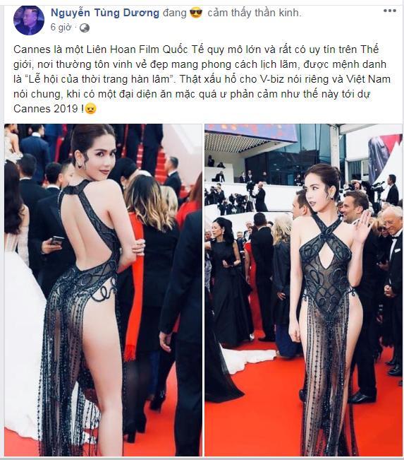 Dàn sao Việt gay gắt chỉ trích chiếc váy không biết xấu hổ của Ngọc Trinh trên thảm đỏ Cannes-4